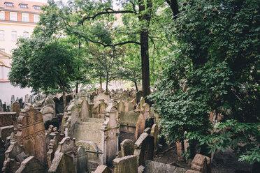 Czechia, Prague, tombstones on the old Jewish Graveyard - GEM02327