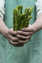 Man holding bundle of green organic asparagus in hands - ASF06209