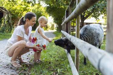 Mother and little daughter feeding a sheep behind fence - DIGF05008