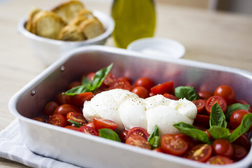 Italian food, caprese, mozzarella and tomatoes and basil - GIOF04231