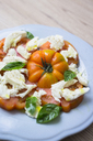 Italian food, caprese, mozzarella and tomatoes and basil - GIOF04252