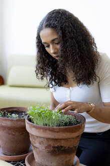 Woman looking at saplings, growing in plant pot at home - HHLMF00331