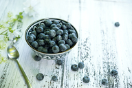 Bowl of blueberries - ASF06211