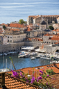 The harbor of Dubrovnik, Croatia. - AURF01869