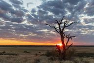 Africa, Botswana, Kgalagadi Transfrontier Park, Mabuasehube Game Reserve, Mabuasehube Pan at sunset - FOF10208