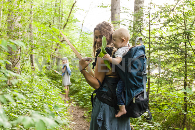 Woman hiking in the woods showing large leaf to baby boy in backpack - TCF05766 - Tom Chance/Westend61