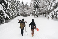 Italy, Modena, Cimone, rear view of couple with skiers and snowboard walking in winter forest - JPIF00011