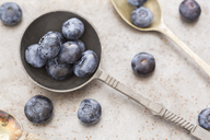 Old spoon with blueberries - JUNF01104