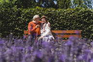 Senior couple sitting on bench in a park, falling in love - UUF14936