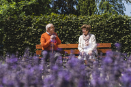 Senior couple sitting on bench in a park, talking - UUF14939