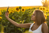 Young woman in a field of sunflowers taking a selfie - ACPF00308
