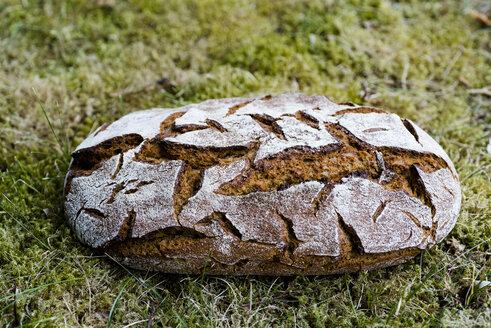 Loaf of brown bread on grass - RAMAF00026