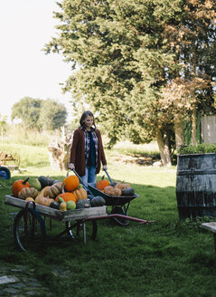 Woman with wheelbarrow of harvested pumpkins on a meadow - RAMAF00059