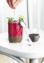 Woman's hands sprinkling glass of rhubarb and chia seeds dessert with dark chocolate nibs - RAMAF00104