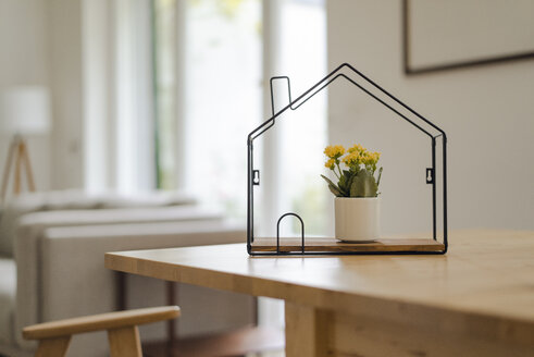 House model with potted flower inside on table - KNSF04729