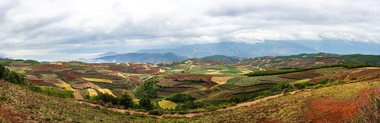 China, Yunnan province, Dongchuan, Red Land - KKAF01539