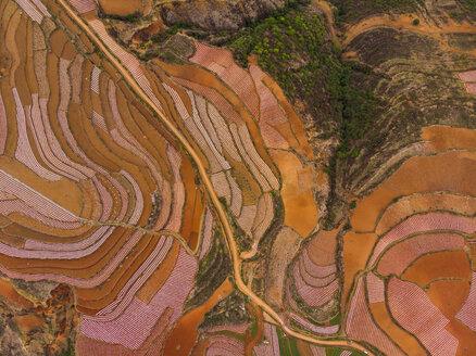 China, Yunnan province, Dongchuan, Red Land - KKAF01542
