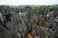 China, Shilin, Stone forest - KKAF01551