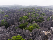 China, Shilin, Stone forest - KKAF01554