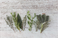 Row of fresh Provencal herbs on wood - JUNF01173