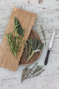 Fresh Provencal herbs, knife and   wooden boards - JUNF01176