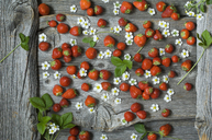 Strawberries and blossoms on wood - ASF06233