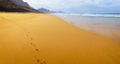 Spain, Canaray Islands, Fuerteventura, Jandia, beach of Barlovento - WWF04399