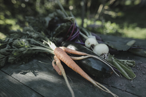 Mixed vegetable lying on garden table - KMKF00537