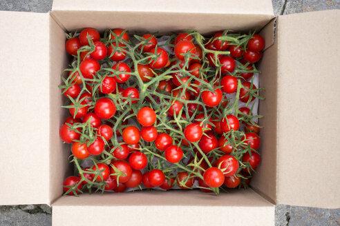 Organic tomatoes in a box - NDF00794