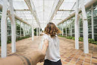 Woman holding hand ofc man in greenhouse - KKAF01681