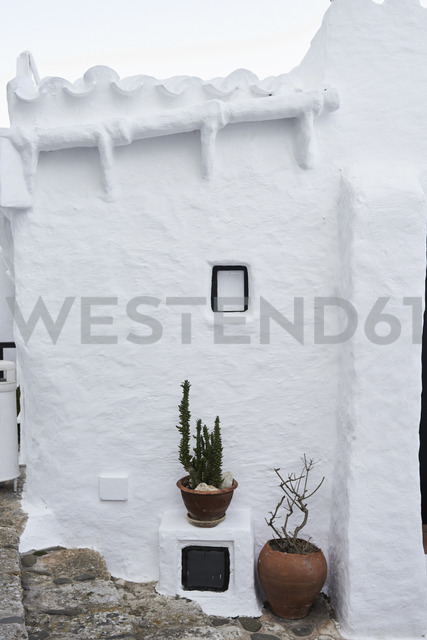 Spain, Menorca, Binibequer, potted plants - IGGF00594