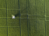 Indonesia, Bali, Aerial view of rice fields - KNTF01245