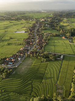Indonesia, Bali, Aerial view of rice fields - KNTF01260
