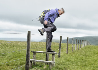 UK, Lake District, Longsleddale valley, mature man with backpack crossing pasture fence - ALRF01273