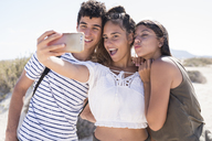 Friends having fun on the beach, taking smartphone selfies - PACF00116