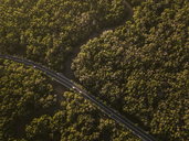 Indonesia, Bali, Aerial view of a road through mangrove forest - KNTF01310