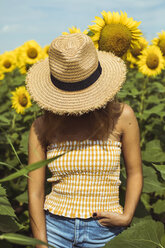 Unrecognizable woman with a straw hat in a field of sunflowers - ACPF00326