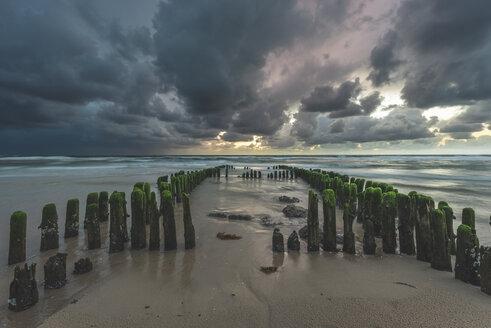 Germany, Schleswig-Holstein, Sylt, Rantum, groynes on West beach - KEBF00932