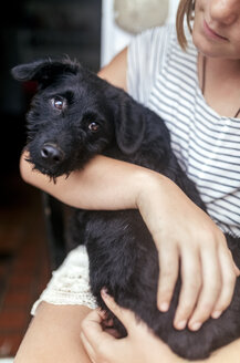 Portrait of black puppy on girl's lap - MGOF03771