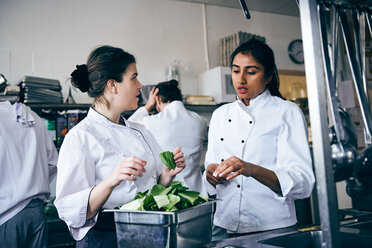 Multi-ethnic female chefs discussing over vegetable in commercial kitchen - MASF08693