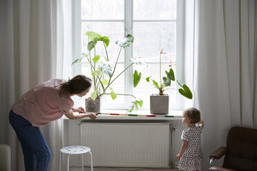 Daughter assisting fashion designer in measuring window with tape measure at home - MASF08756