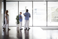 Full length of doctors and nurses discussing while standing in corridor against window at hospital - MASF09269