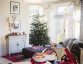 Festive, decorated Christmas tree and living room - HOXF03883