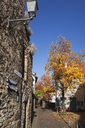 Germany, Rhineland-Palatinate, Freinsheim, City wall in autumn - GWF05640