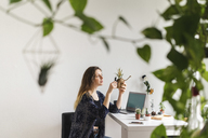 Young woman with laptop at home caring for plants - AFVF01538