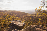 Germany,Rhineland-Palatinate, Pfalz, View from Drachenfels, Palatinate Forest Nature Park in autumn - GWF05682