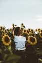 Portrait of a young woman standing in a field of sunflowers, hand in hair - OCAF00353