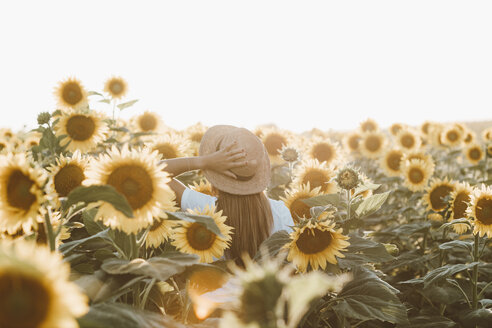 Back view of young woman standing in a field of sunflowers - OCAF00365