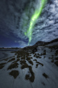 Northern lights in Iceland - AURF04712