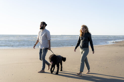 Young couple walking with their dog on the beach - HHLMF00475